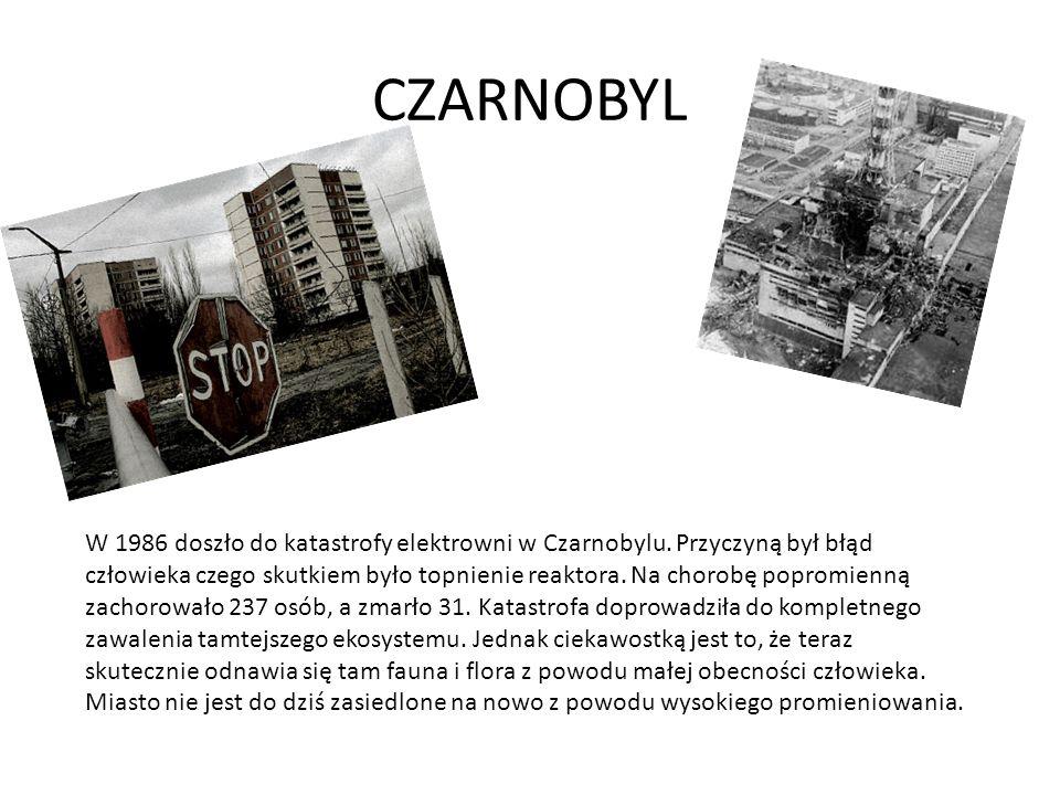 CZARNOBYL W 1986 doszło do katastrofy elektrowni w Czarnobylu.