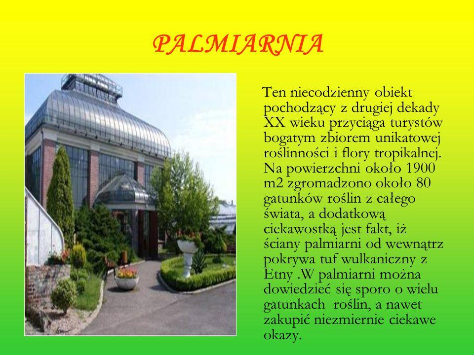 PALMIARNIA Ten niecodzienny obiekt pochodzący z drugiej dekady XX wieku przyciąga turystów bogatym zbiorem unikatowej roślinności i flory tropikalnej.