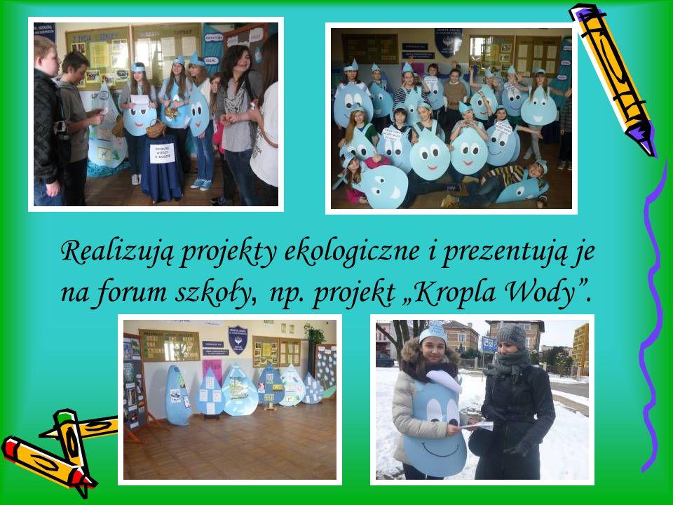 """Realizują projekty ekologiczne i prezentują je na forum szkoły, np. projekt """"Kropla Wody""""."""