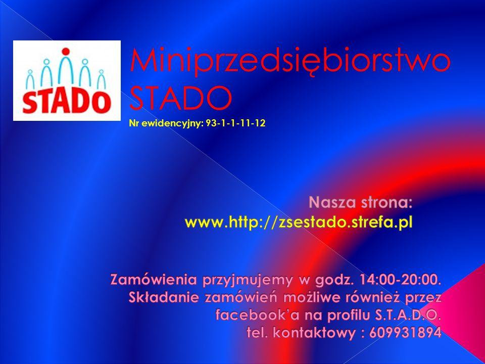 Miniprzedsiębiorstwo STADO Nr ewidencyjny: 93-1-1-11-12