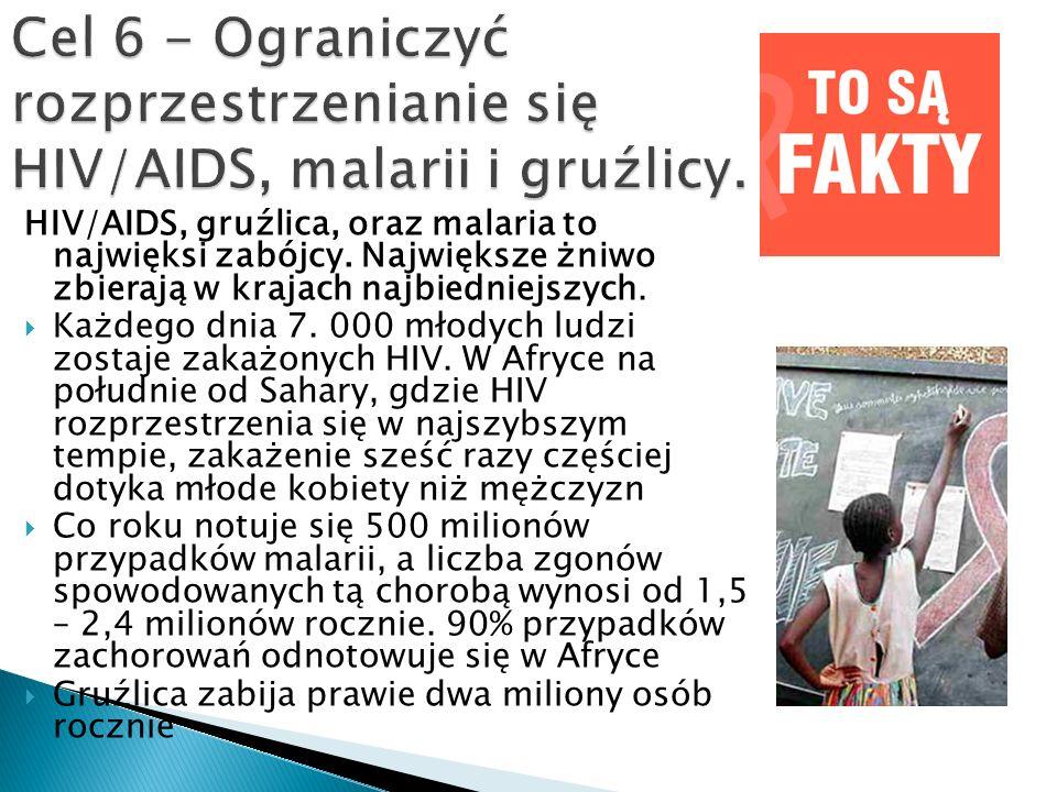 HIV/AIDS, gruźlica, oraz malaria to najwięksi zabójcy. Największe żniwo zbierają w krajach najbiedniejszych.  Każdego dnia 7. 000 młodych ludzi zosta