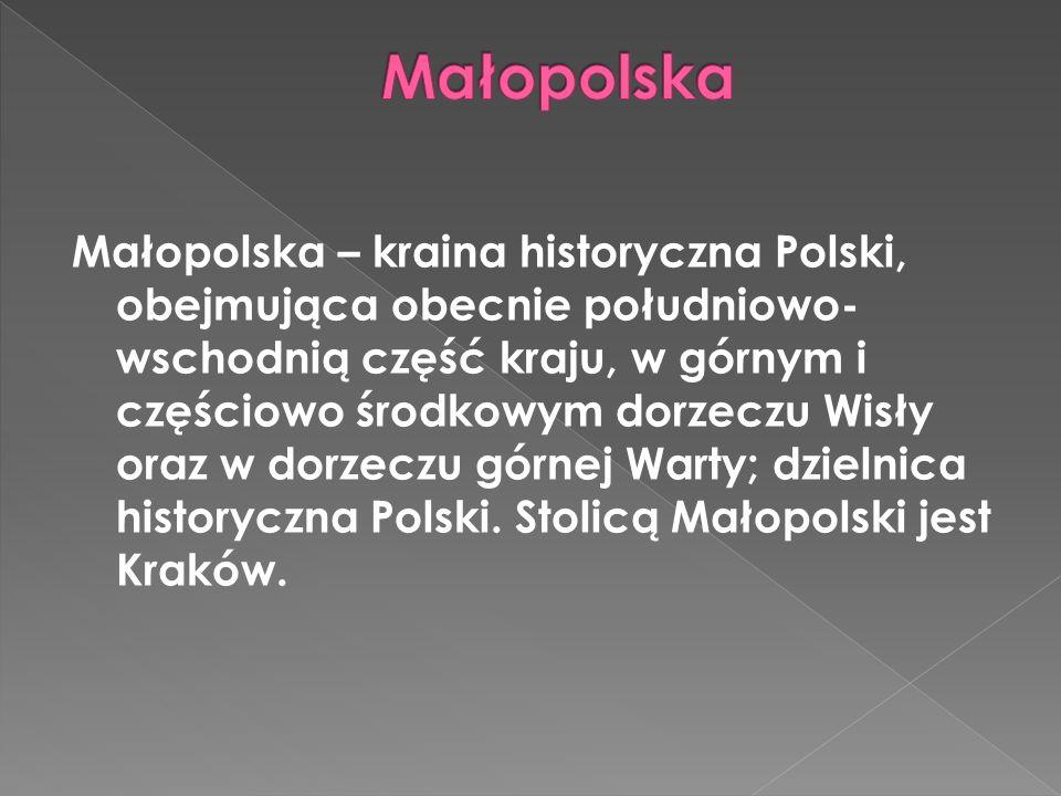 Województwo małopolskie – jedno z 16 województw Polski.