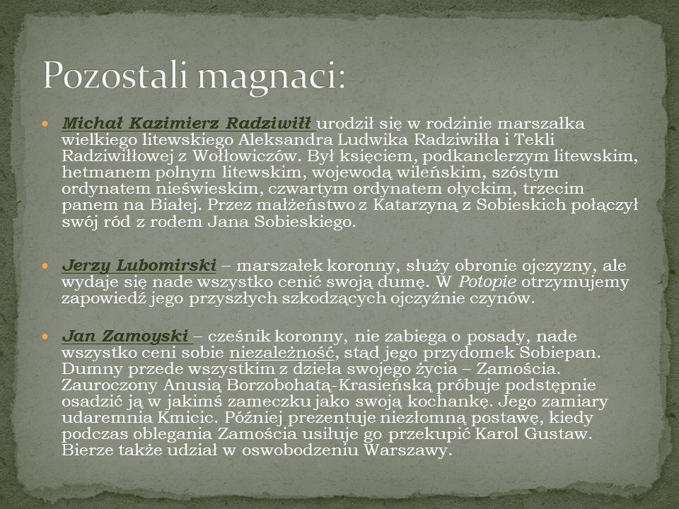 Michał Kazimierz Radziwiłł urodził się w rodzinie marszałka wielkiego litewskiego Aleksandra Ludwika Radziwiłła i Tekli Radziwiłłowej z Wołłowiczów. B
