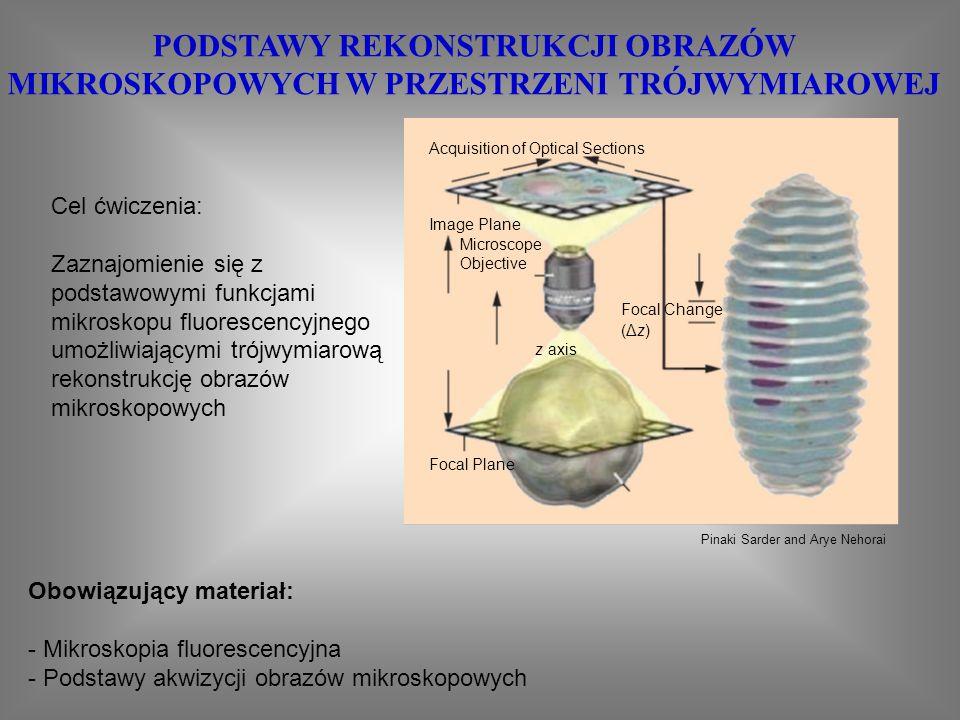 KOMUNIKACJA MIĘDZYKOMÓRKOWA Zagadnienia do przygotowania: 1.Zasada działania mikroskopu fluorescencyjnego 2.Analizy intensywności międzykomórkowego transferu metabolitów techniką scrape-loading 3.Test żywotności komórek z wykorzystaniem dwuoctanu fluoresceiny Zalecana literatura: 1.Instrukcje do ćwiczeń 2.Alberts, Biologia komórki Złącza szczelinowe zbudowane są z kompleksów białkowych tworzących międzykomórkowe kanały, które łączą przedziały cytoplazmatyczne sąsiednich komórek.