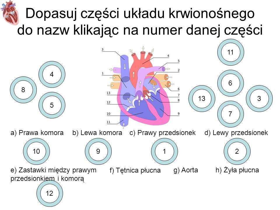 12 Dopasuj części układu krwionośnego do nazw klikając na numer danej części a) Prawa komorab) Lewa komorac) Prawy przedsionekd) Lewy przedsionek e) Z