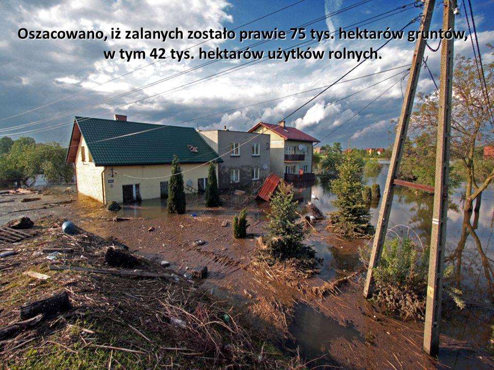 Oszacowano, iż zalanych zostało prawie 75 tys. hektarów gruntów, w tym 42 tys.