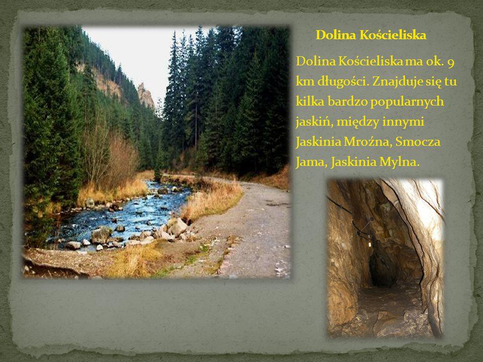 Dolina Chochołowska jest najdłuższą i największą doliną w polskich Tatrach.