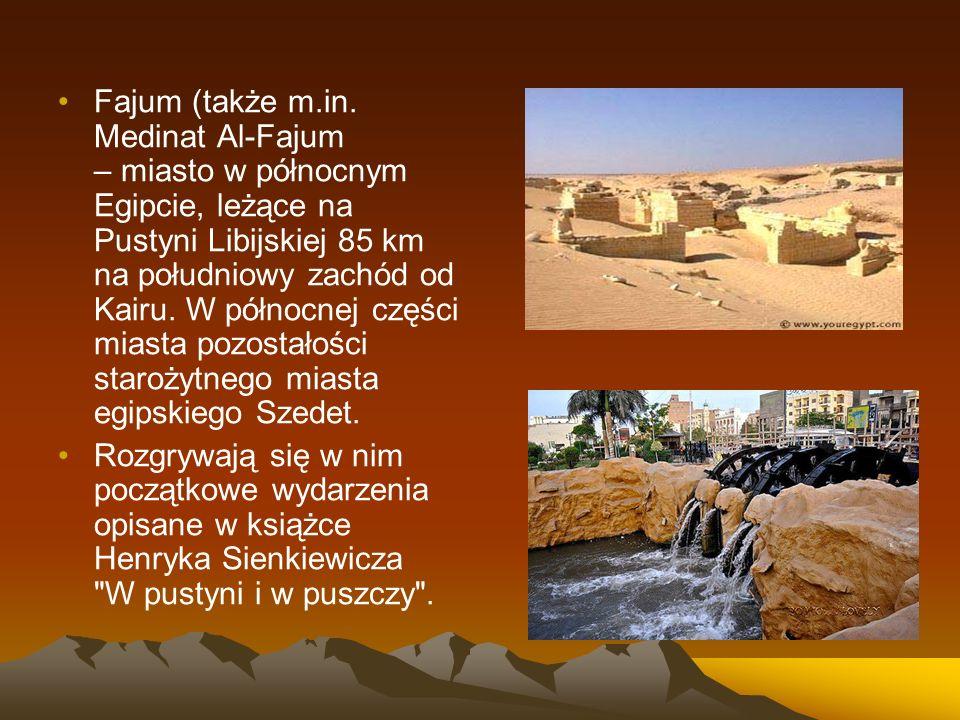 Fajum (także m.in. Medinat Al-Fajum – miasto w północnym Egipcie, leżące na Pustyni Libijskiej 85 km na południowy zachód od Kairu. W północnej części