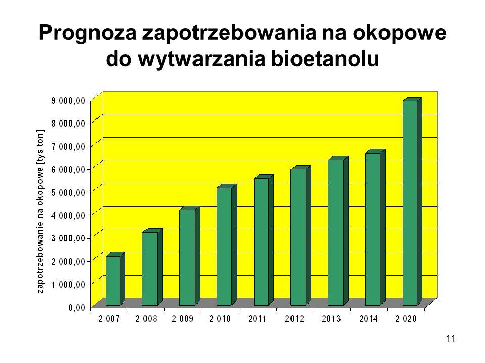 Warszawa - 2008-02-2211 Prognoza zapotrzebowania na okopowe do wytwarzania bioetanolu