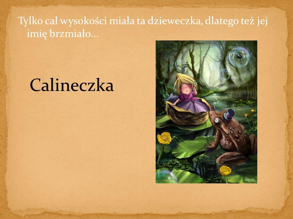 Tylko cal wysokości miała ta dzieweczka, dlatego też jej imię brzmiało... Calineczka