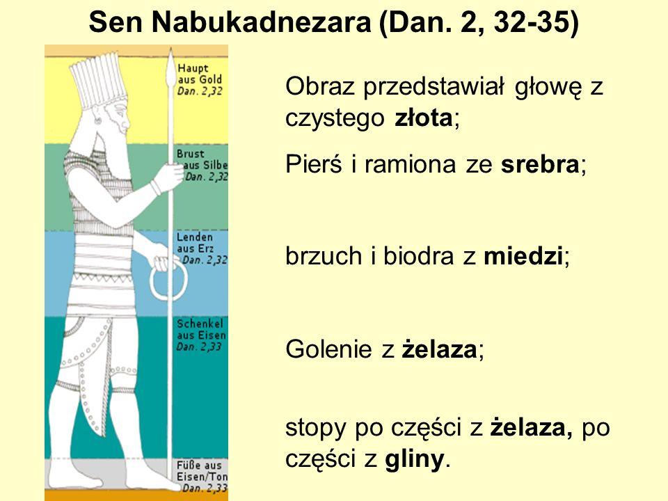 Obraz przedstawiał głowę z czystego złota; Pierś i ramiona ze srebra; brzuch i biodra z miedzi; Golenie z żelaza; stopy po części z żelaza, po części z gliny.