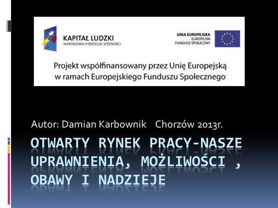 Autor: Damian Karbownik Chorzów 2013r.