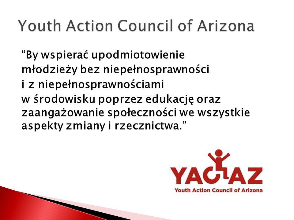 By wspierać upodmiotowienie młodzieży bez niepełnosprawności i z niepełnosprawnościami w środowisku poprzez edukację oraz zaangażowanie społeczności we wszystkie aspekty zmiany i rzecznictwa.