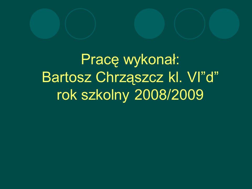 Pracę wykonał: Bartosz Chrząszcz kl. VI d rok szkolny 2008/2009