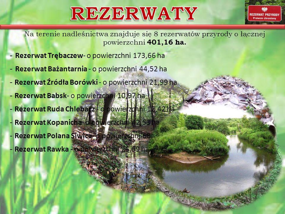 Na terenie nadleśnictwa znajduje się 8 rezerwatów przyrody o łącznej powierzchni 401,16 ha. - Rezerwat Trębaczew- o powierzchni 173,66 ha - Rezerwat B