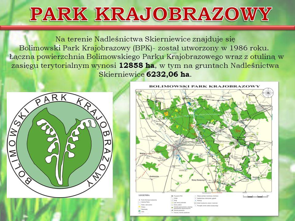 Na terenie Nadleśnictwa Skierniewice znajduje się Bolimowski Park Krajobrazowy (BPK)- został utworzony w 1986 roku. Łączna powierzchnia Bolimowskiego