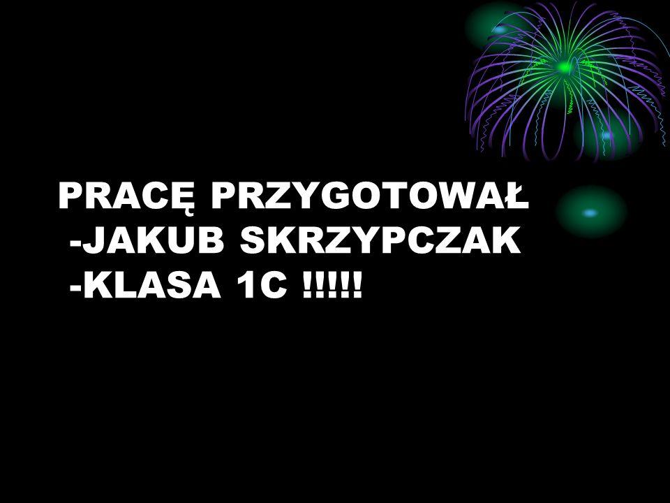PRACĘ PRZYGOTOWAŁ -JAKUB SKRZYPCZAK -KLASA 1C !!!!!