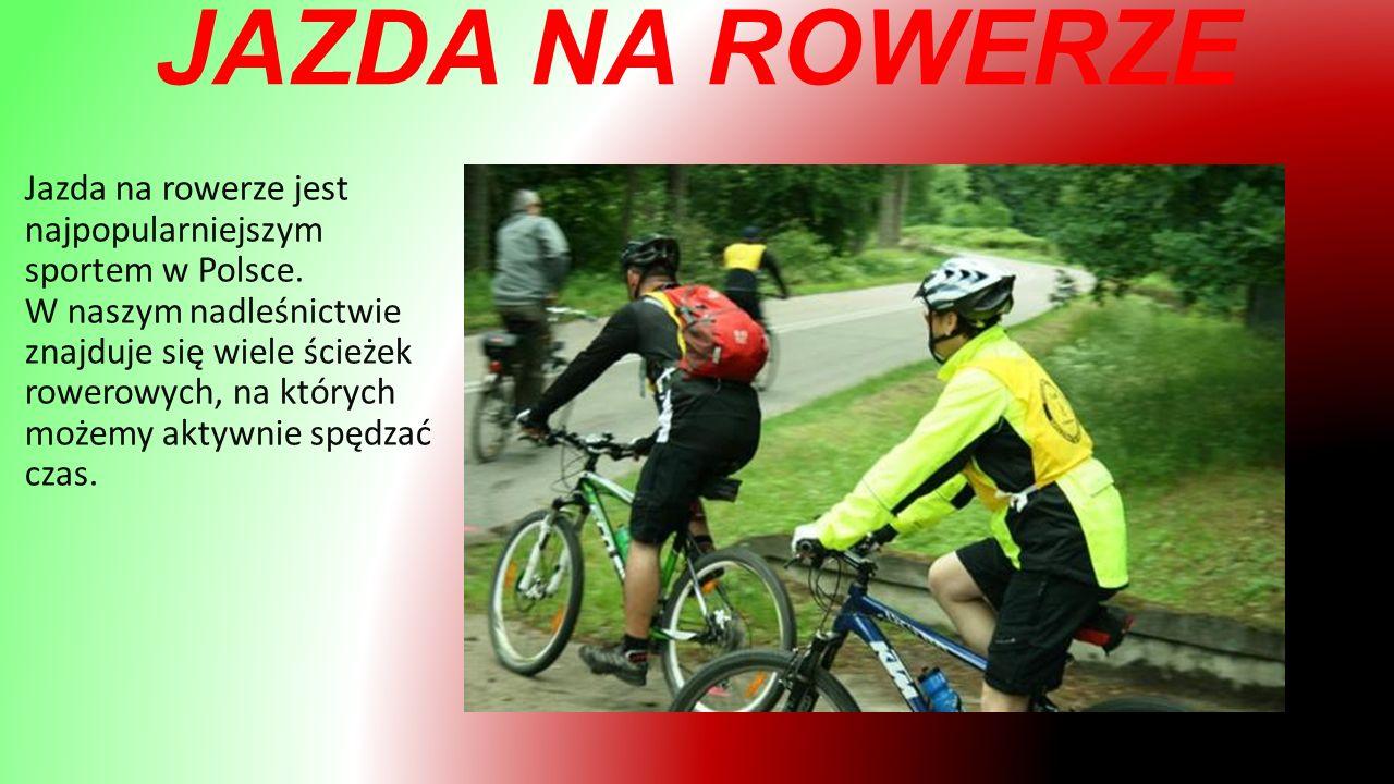JAZDA NA ROWERZE Jazda na rowerze jest najpopularniejszym sportem w Polsce.