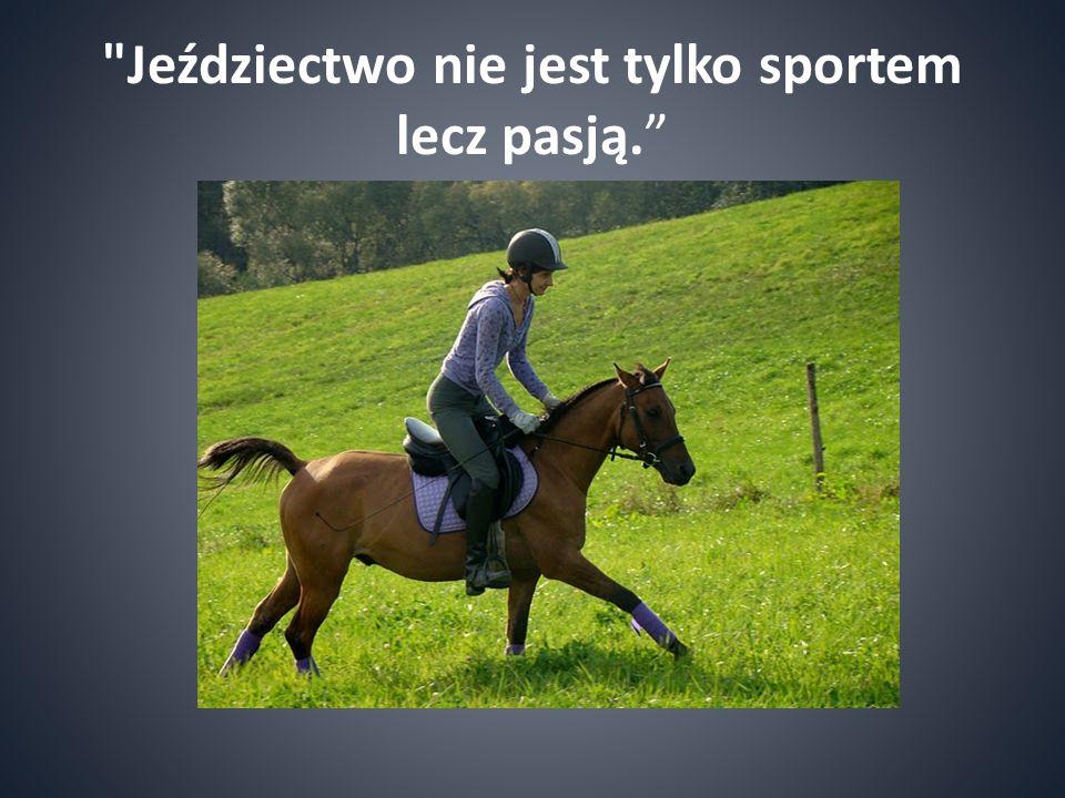 Jeździectwo nie jest tylko sportem lecz pasją.