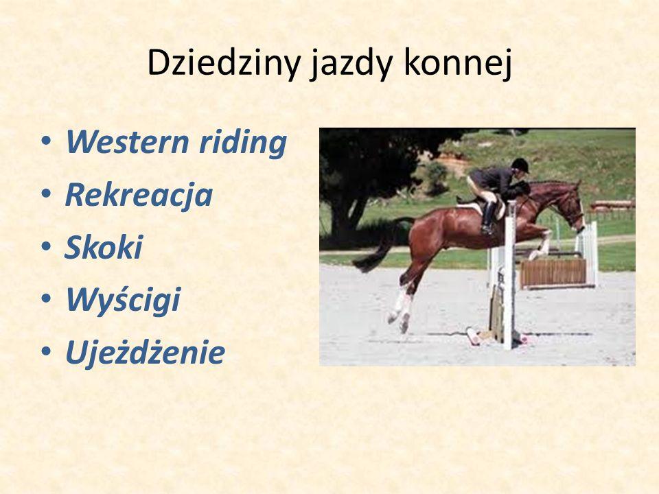 Dziedziny jazdy konnej Western riding Rekreacja Skoki Wyścigi Ujeżdżenie