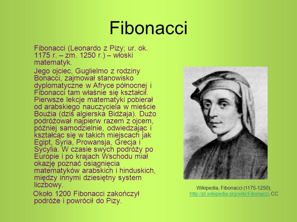 Fibonacci Fibonacci (Leonardo z Pizy; ur. ok. 1175 r. – zm. 1250 r.) – włoski matematyk. Jego ojciec, Guglielmo z rodziny Bonacci, zajmował stanowisko