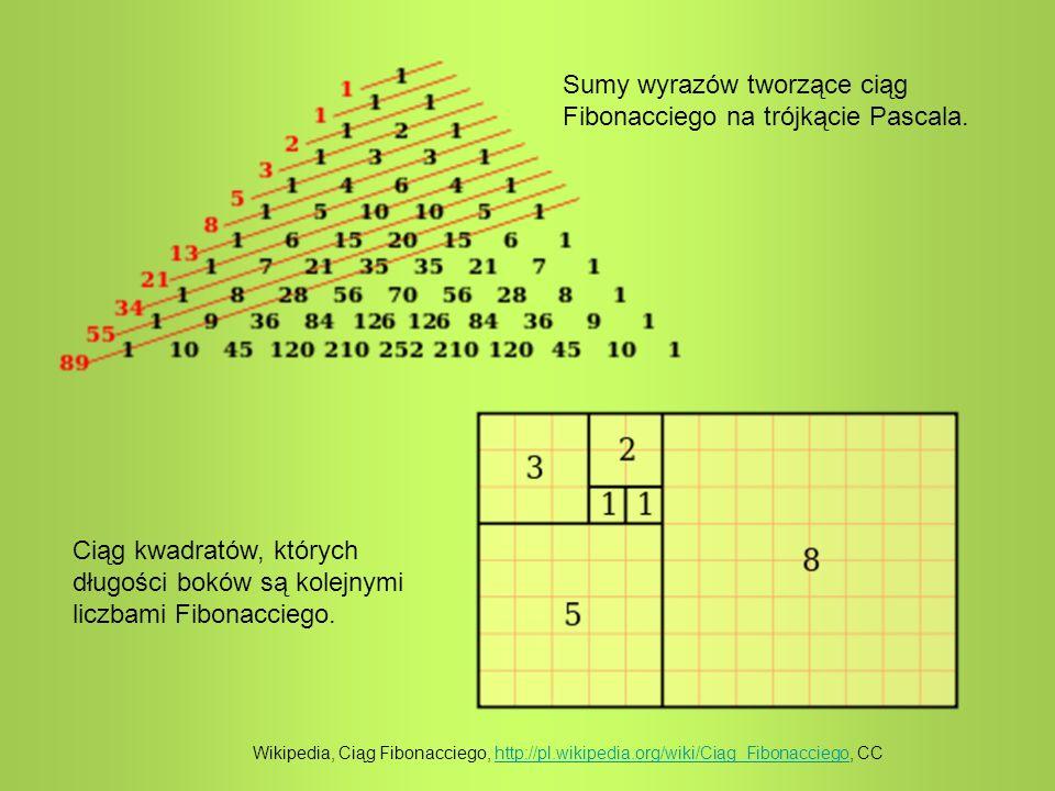 Sumy wyrazów tworzące ciąg Fibonacciego na trójkącie Pascala. Ciąg kwadratów, których długości boków są kolejnymi liczbami Fibonacciego. Wikipedia, Ci