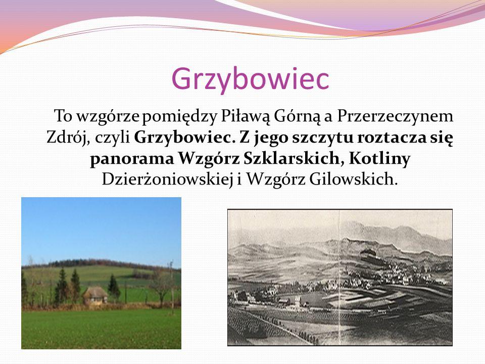 Grzybowiec To wzgórze pomiędzy Piławą Górną a Przerzeczynem Zdrój, czyli Grzybowiec.