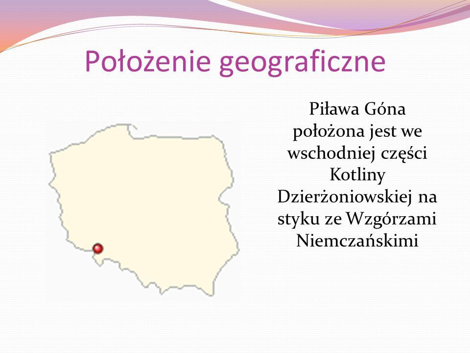 Wieża widokowa Zbudowana pod koniec XIX wieku, prawdopodobnie na terenie posiadłości Seidlitzów- ówczesnych właścicieli Owiesna, położona na jednym ze wzniesień pomiędzy Piławą Górną a Owiesnem.