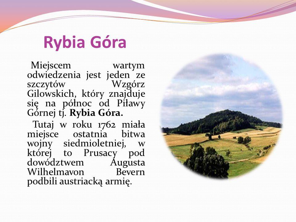 Rybia Góra Miejscem wartym odwiedzenia jest jeden ze szczytów Wzgórz Gilowskich, który znajduje się na północ od Piławy Górnej tj.