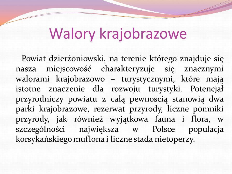 Walory krajobrazowe Powiat dzierżoniowski, na terenie którego znajduje się nasza miejscowość charakteryzuje się znacznymi walorami krajobrazowo – turystycznymi, które mają istotne znaczenie dla rozwoju turystyki.