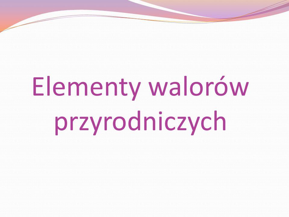 Elementy walorów przyrodniczych