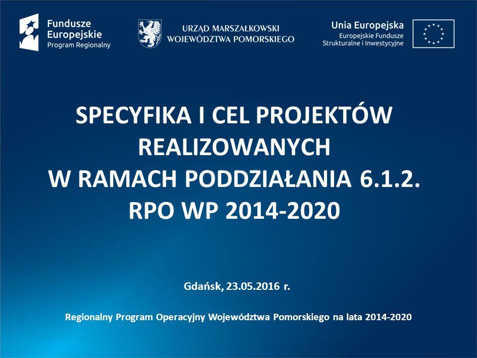 SPECYFIKA I CEL PROJEKTÓW REALIZOWANYCH W RAMACH PODDZIAŁANIA 6.1.2.
