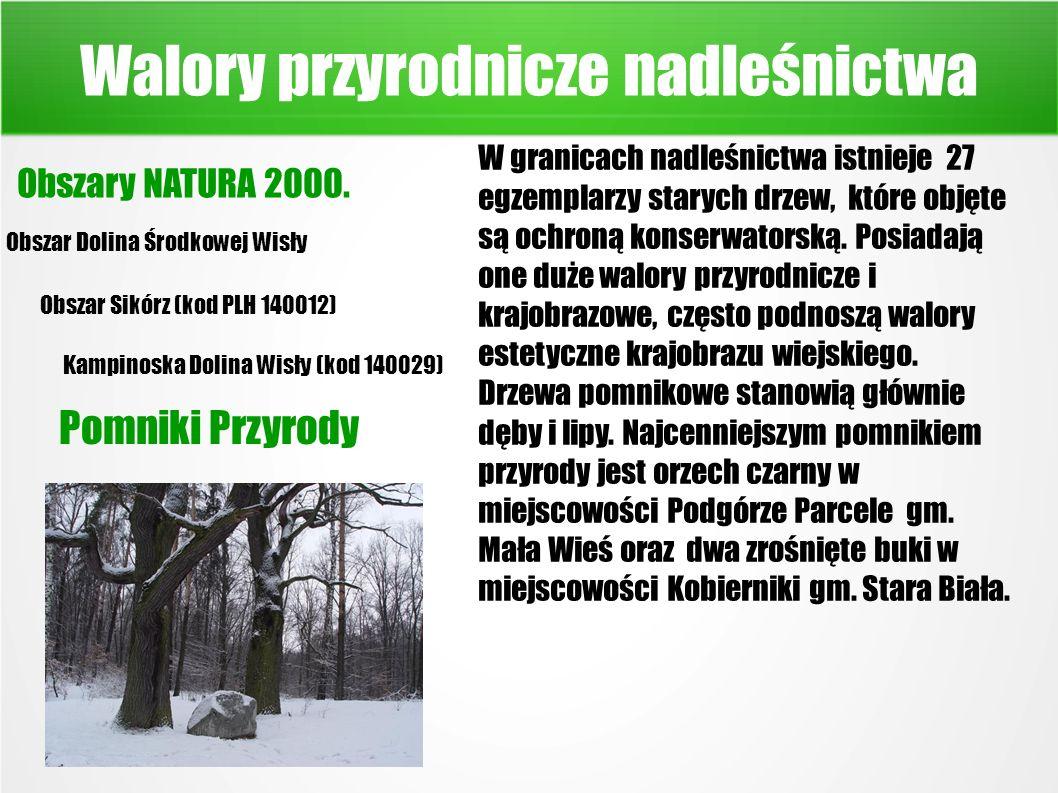Walory przyrodnicze nadleśnictwa Obszary NATURA 2000.