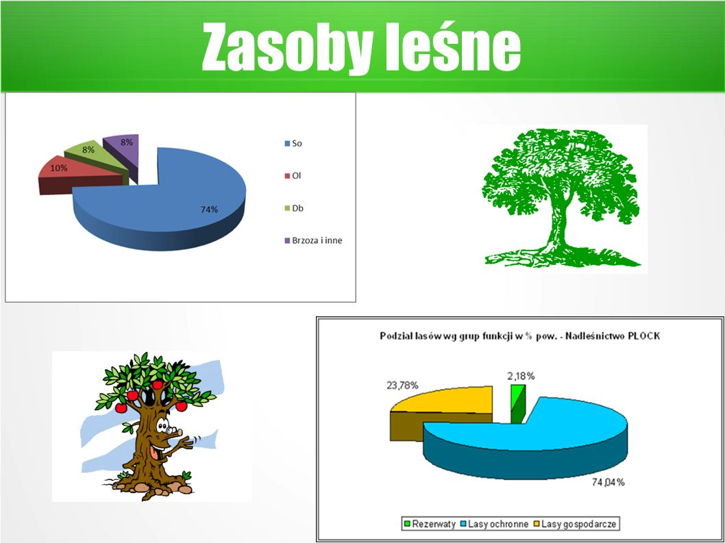 Zasoby leśne