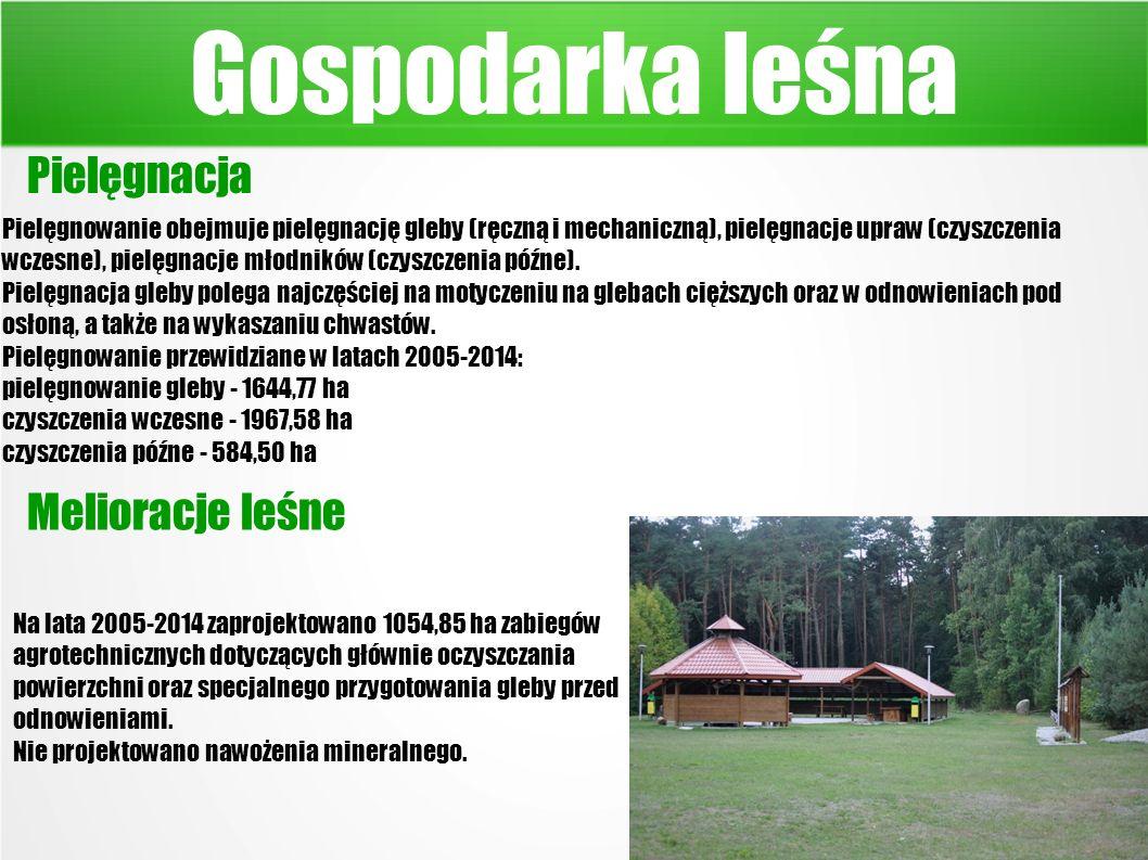 Gospodarka leśna Pielęgnowanie obejmuje pielęgnację gleby (ręczną i mechaniczną), pielęgnacje upraw (czyszczenia wczesne), pielęgnacje młodników (czyszczenia późne).