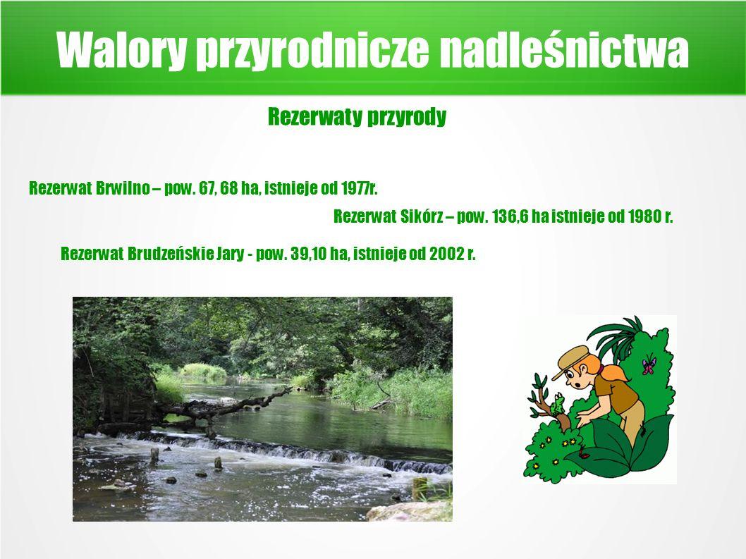 Walory przyrodnicze nadleśnictwa Rezerwaty przyrody Rezerwat Brwilno – pow.