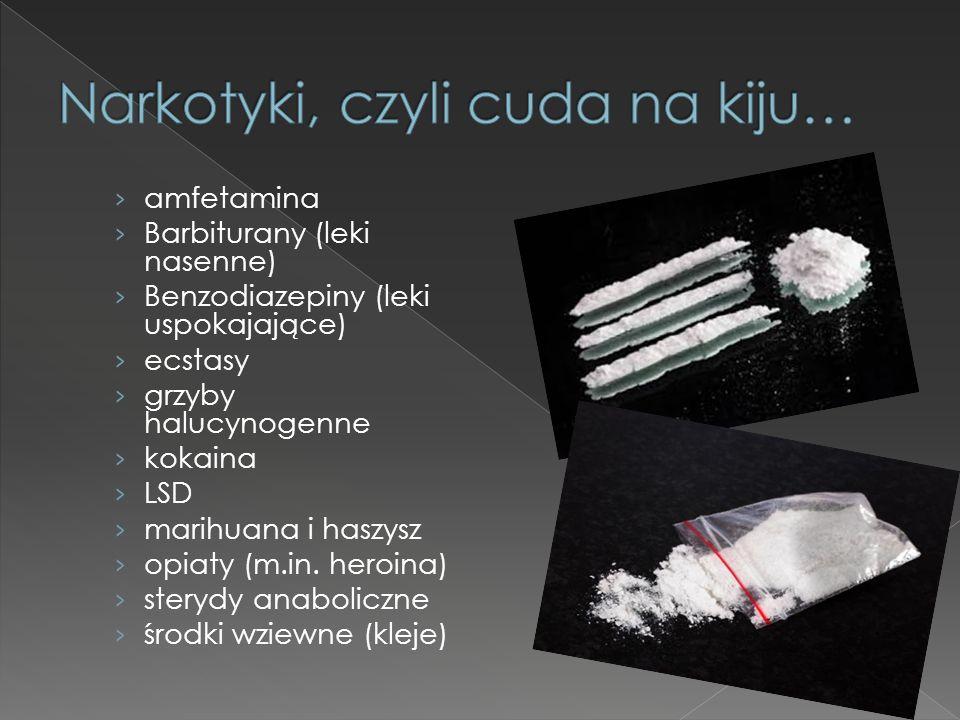 › amfetamina › Barbiturany (leki nasenne) › Benzodiazepiny (leki uspokajające) › ecstasy › grzyby halucynogenne › kokaina › LSD › marihuana i haszysz › opiaty (m.in.