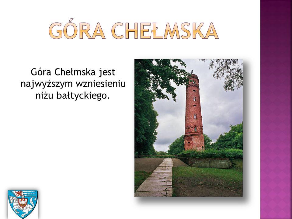 Góra Chełmska jest najwyższym wzniesieniu niżu bałtyckiego.