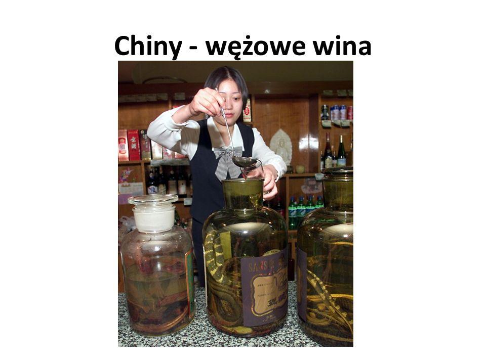 Chiny - wężowe wina
