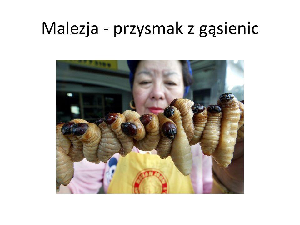 Malezja - przysmak z gąsienic