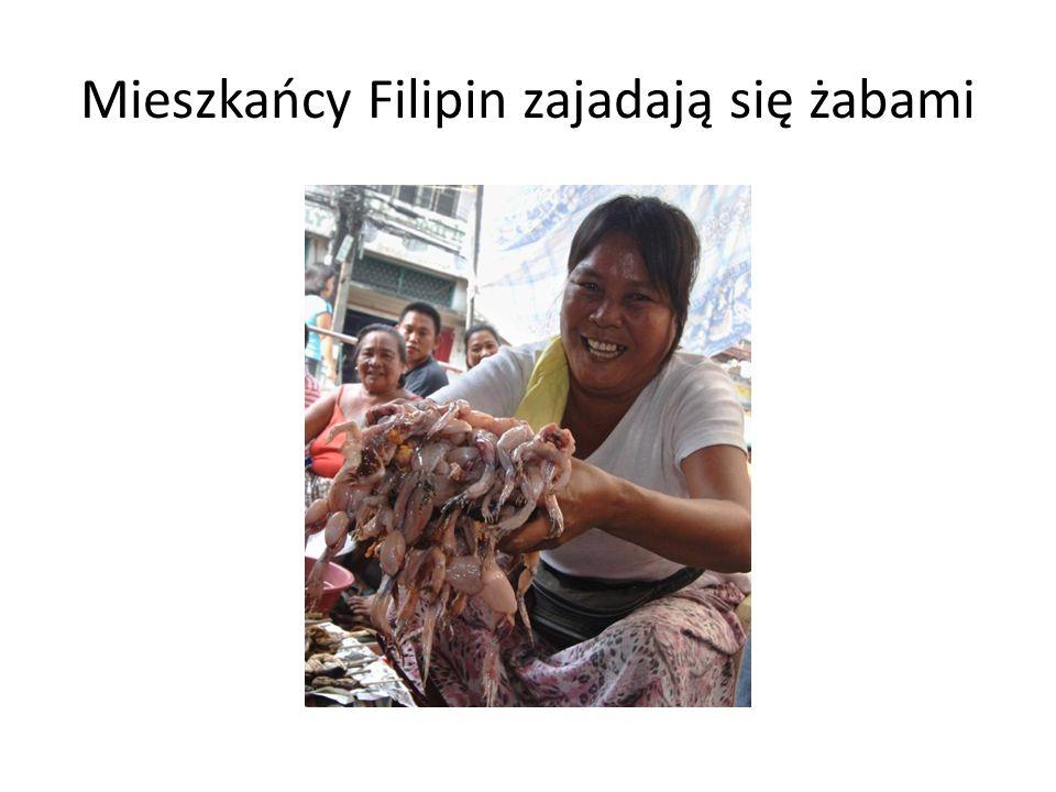 Mieszkańcy Filipin zajadają się żabami