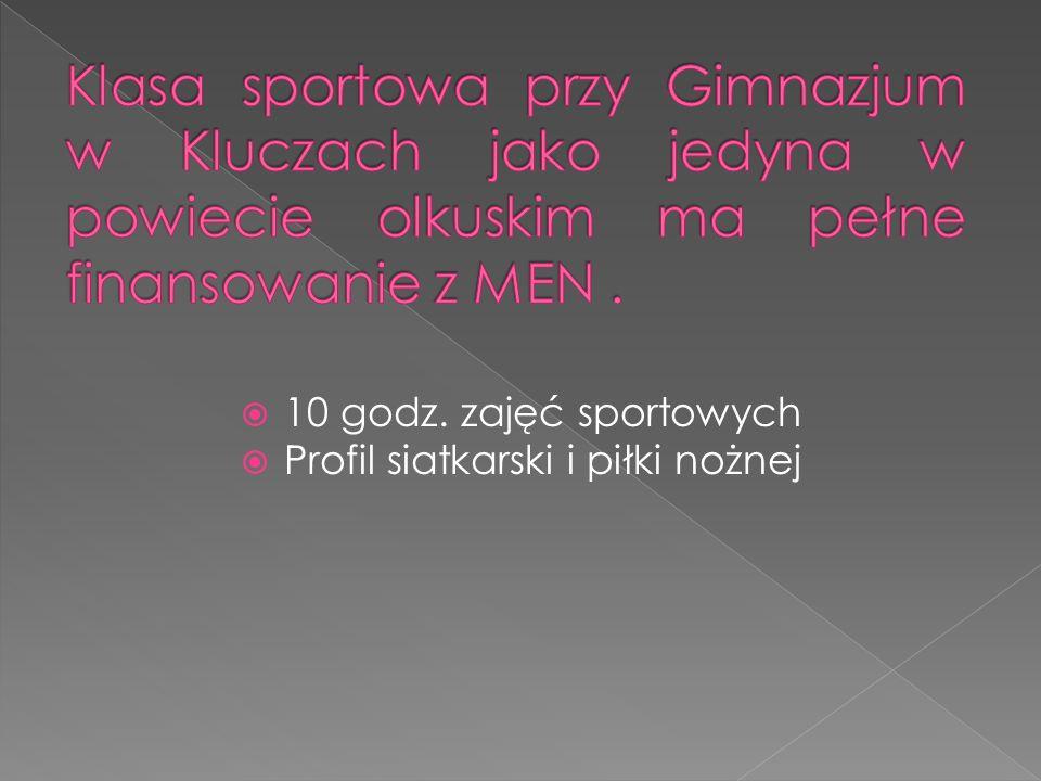  10 godz. zajęć sportowych  Profil siatkarski i piłki nożnej
