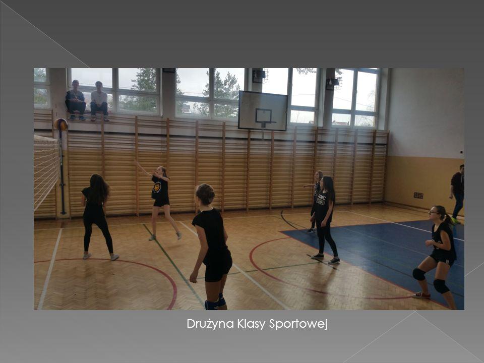  Uczniowskim Klubem Sportowym w Kluczach  GLKS,,Przemsza'' Klucze  WOPR oddział Olkusz  Organizacjami pozarządowymi