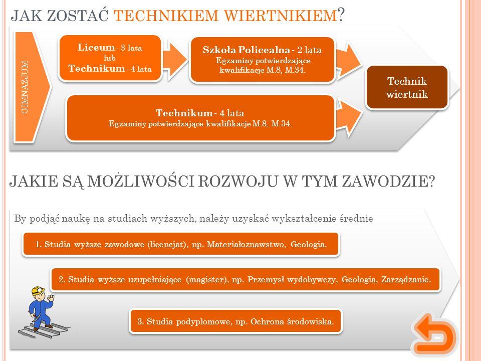 1. Studia wyższe zawodowe (licencjat), np. Materiałoznawstwo, Geologia.