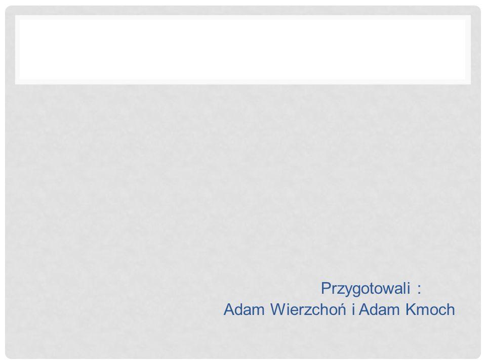Przygotowali : Adam Wierzchoń i Adam Kmoch