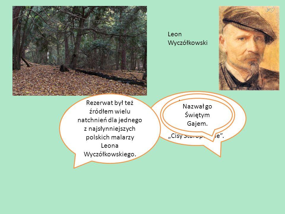 """W naszych wspaniałych Borach mamy najstarszy rezerwat w Polsce """"Cisy Staropolskie ."""