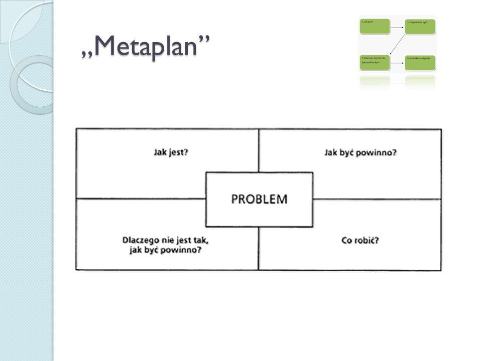 """""""Metaplan"""""""