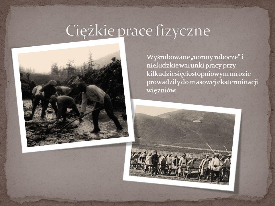 """Wyśrubowane """"normy robocze i nieludzkie warunki pracy przy kilkudziesięciostopniowym mrozie prowadziły do masowej eksterminacji więźniów."""
