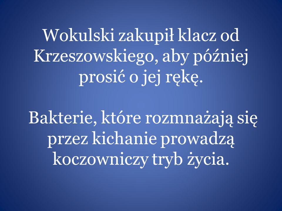 Wokulski zakupił klacz od Krzeszowskiego, aby później prosić o jej rękę. Bakterie, które rozmnażają się przez kichanie prowadzą koczowniczy tryb życia