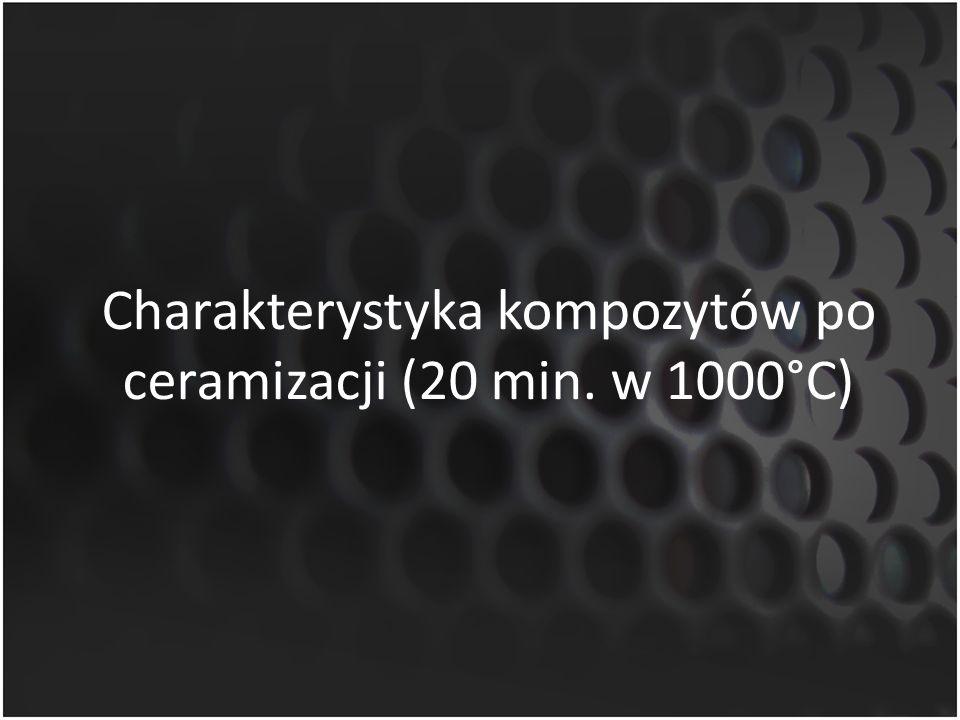 Charakterystyka kompozytów po ceramizacji (20 min. w 1000°C)